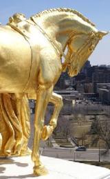 208_mn gold horses